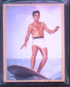 surfing elvis